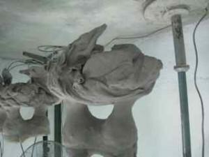 3 ceramic coated